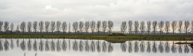aardrijkskunde, polders