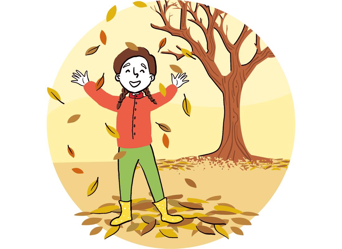 bomen in de herfst