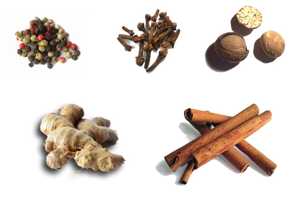 Specerijen - Geschiedenis tijd van ontdekkers en hervormers