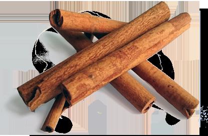 Specerijen - kaneel