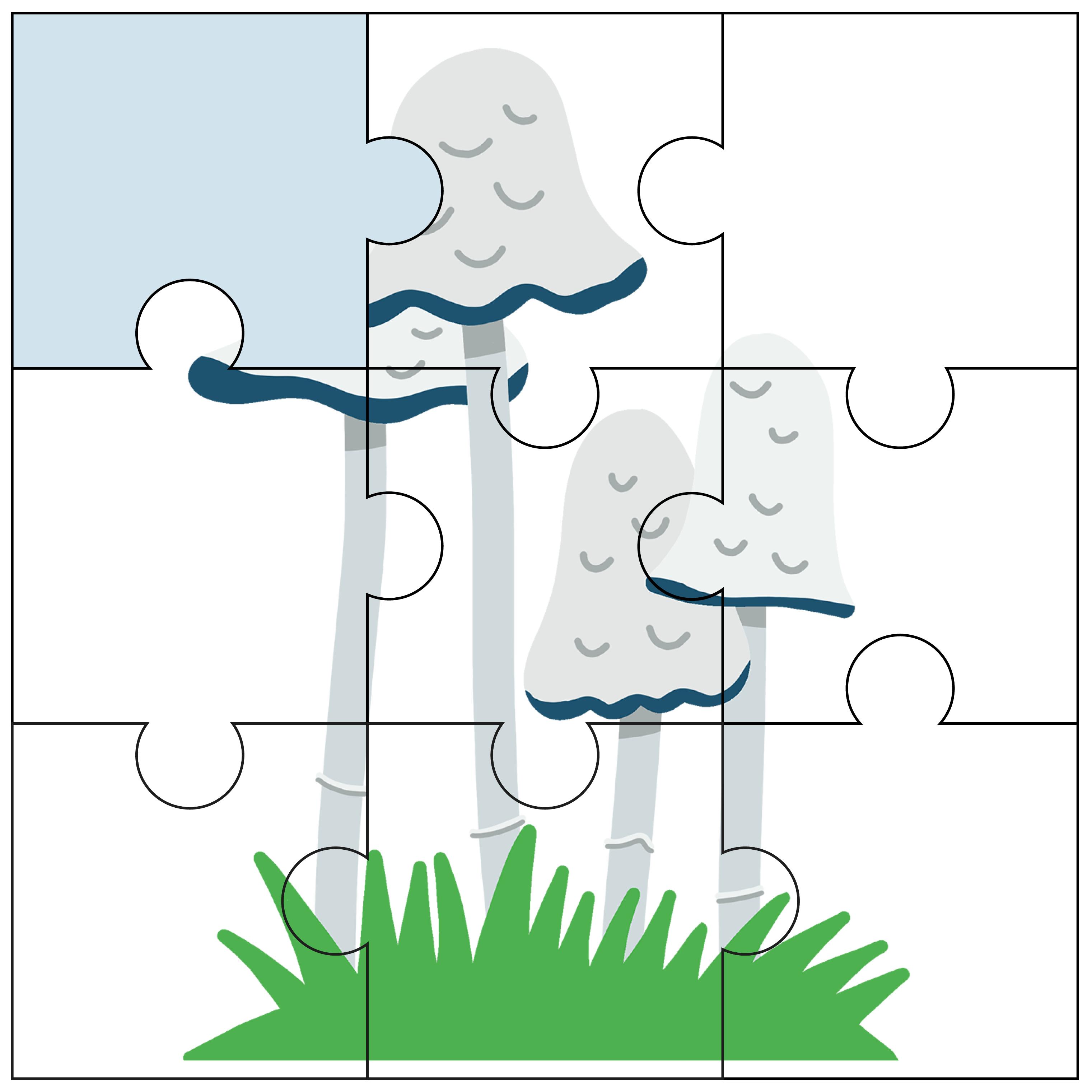 puzzel, junior einstein, inzicht, kleuters