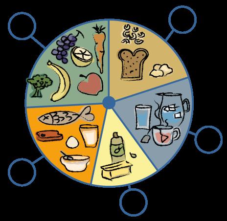 natuur en techniek groep 5 gezond eten en drinken