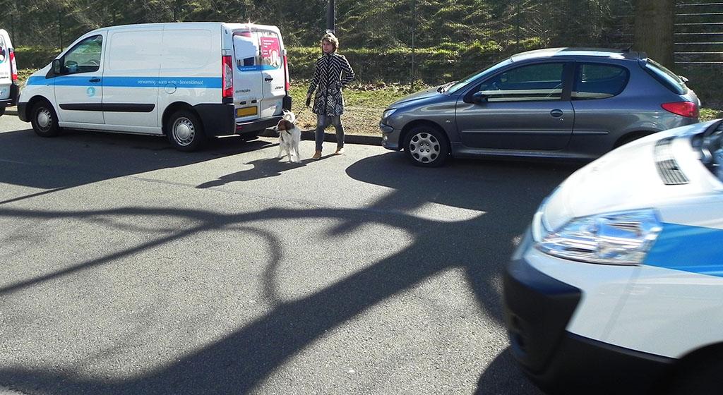 oversteken tussen geparkeerde auto's