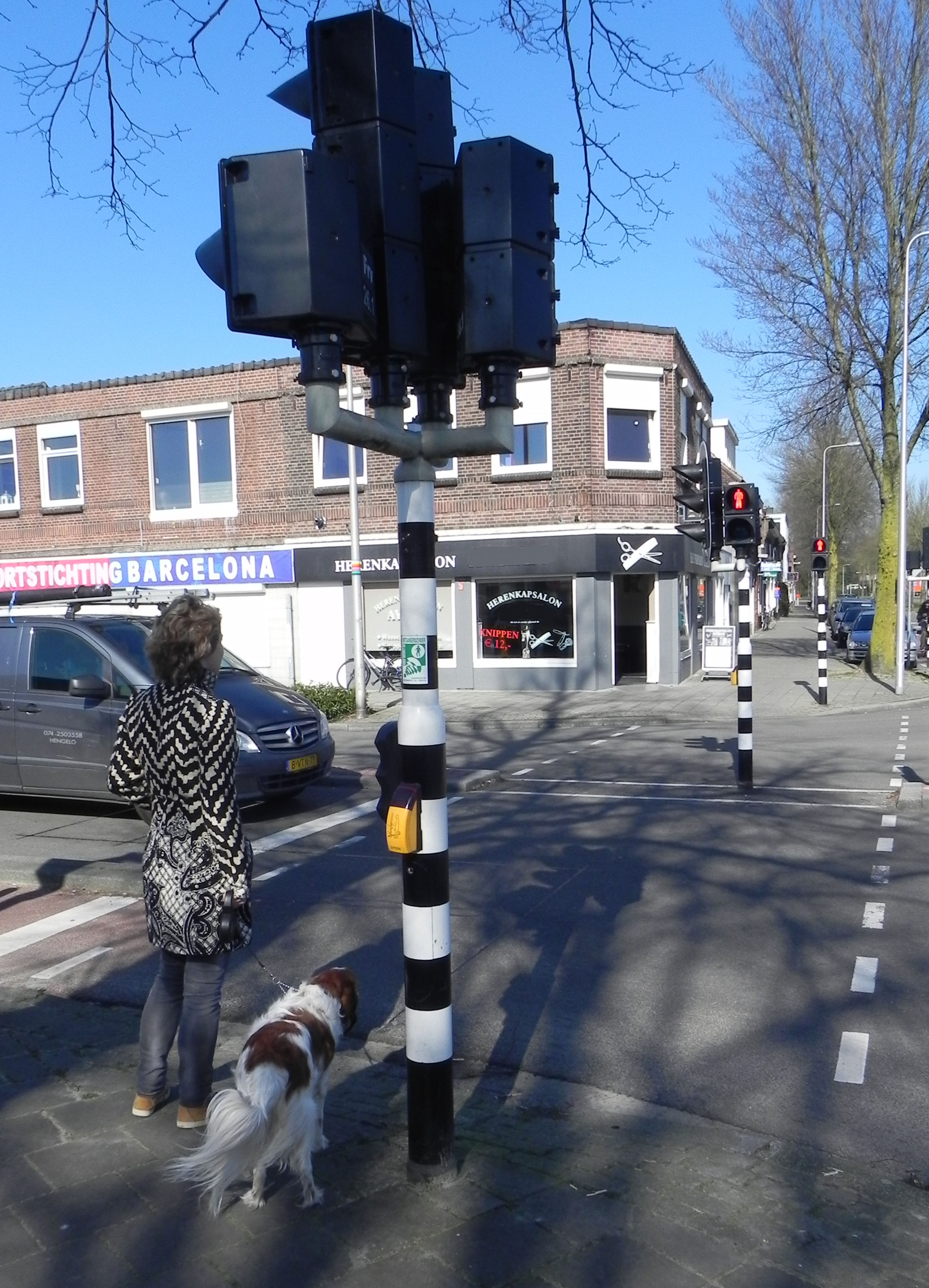 Voetgangerslicht, veilig oversteken als het licht groen is. Online verkeersexamen oefenen.